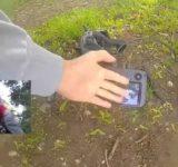 Test Drone FPV Streaming HD