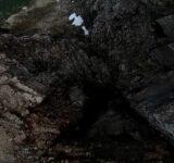 drone FPV montagne